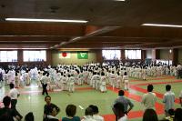 第6回兵庫県小学生学年別柔道大会